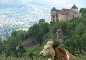 Franche-Comté een prachtige onbekende streek in Frankrijk.