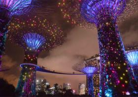 Singapore de moeite waard