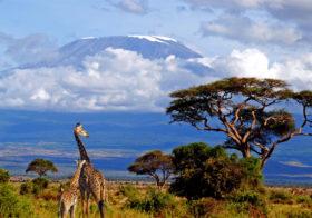 Tanzania hét natuurjuweeltje van Oostelijk Afrika.